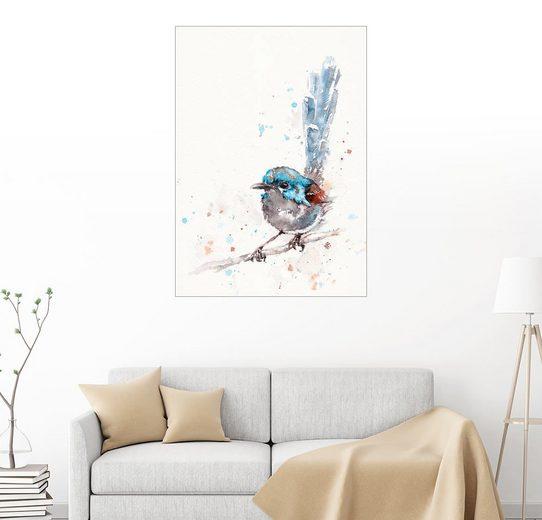 Posterlounge Wandbild - Sillier Than Sally »Unfug in der Herstellung (bunte Fee wren)«