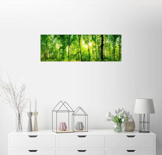 Posterlounge Wandbild - Nova Art »Im Grünen«