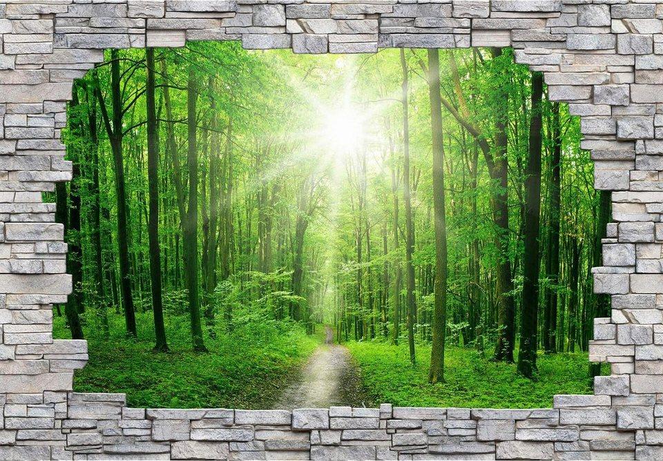 Fototapete 3 D 3d fototapete 3d forest mauer 366 254 cm otto