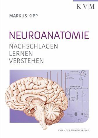 Broschiertes Buch »Neuroanatomie«