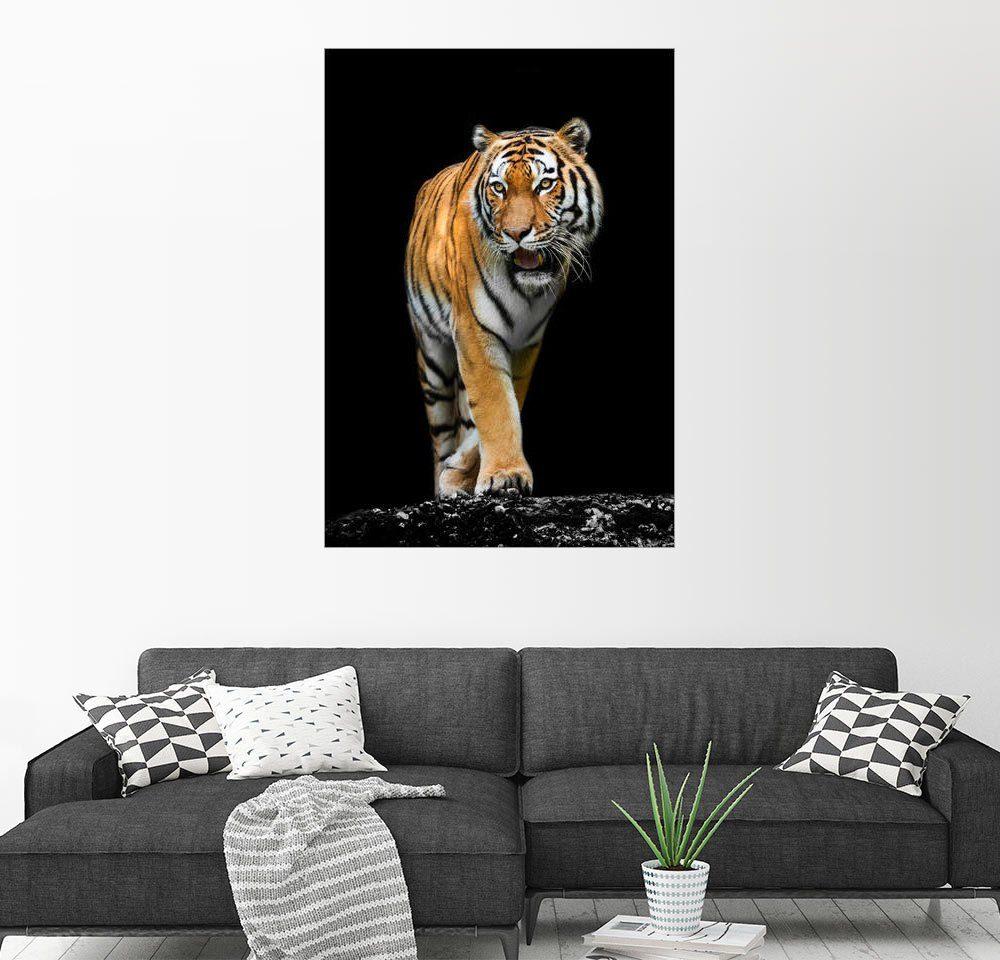 Posterlounge Wandbild »Männlicher Tiger«