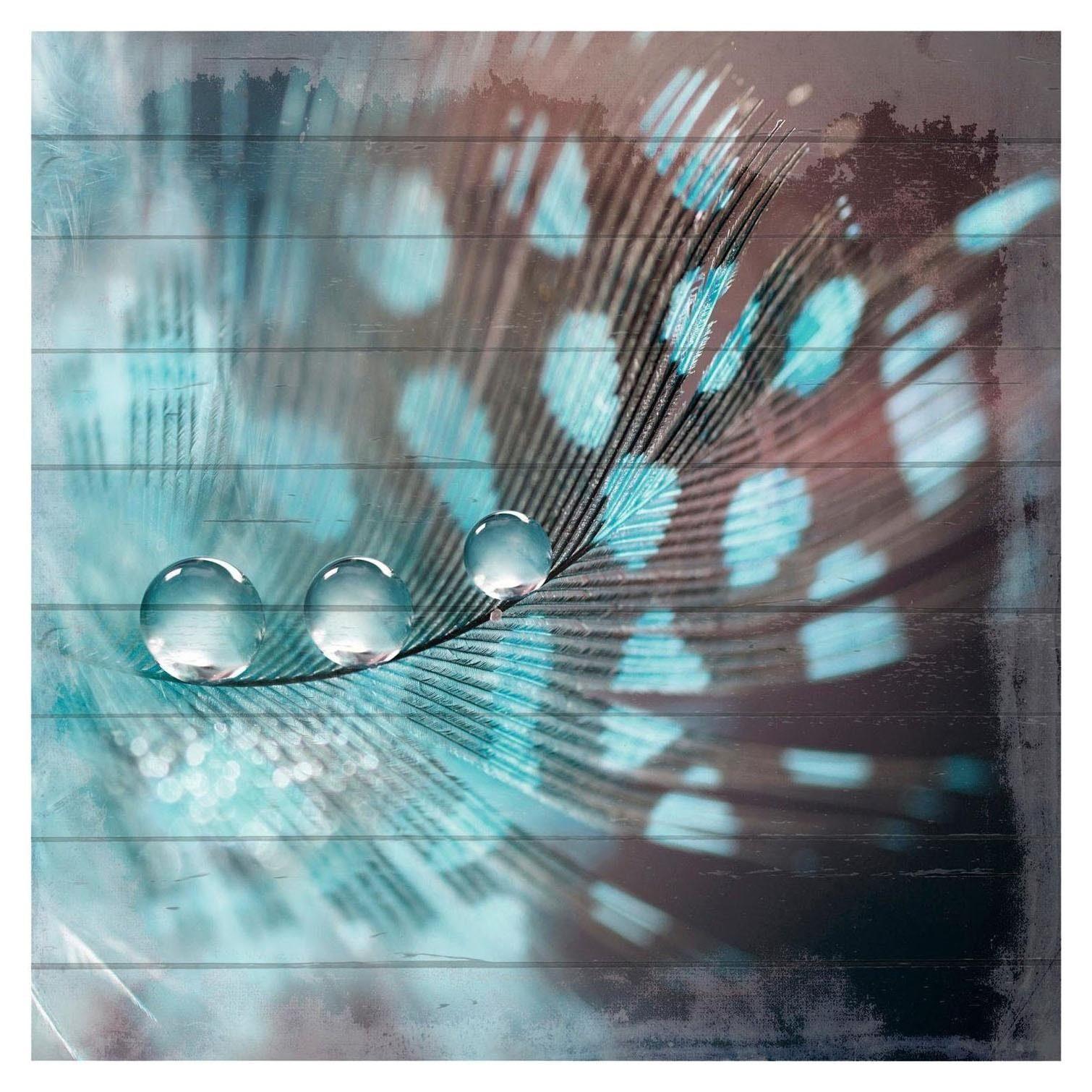 Home affaire Holzbild »Wassertropfen auf Feder«, Wassertropfen, Feder, 40/40 cm