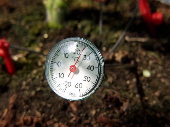 VITAVIA Thermometer , Zur Kontrolle der Bodentemperatur