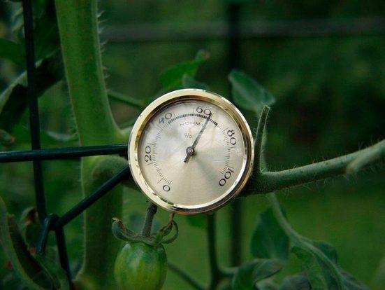 VITAVIA Feuchtigkeitsmesser »Hygrometer«