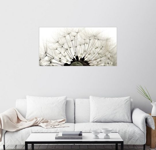 Posterlounge Wandbild - Julia Delgado »Pusteblume ganz nah«