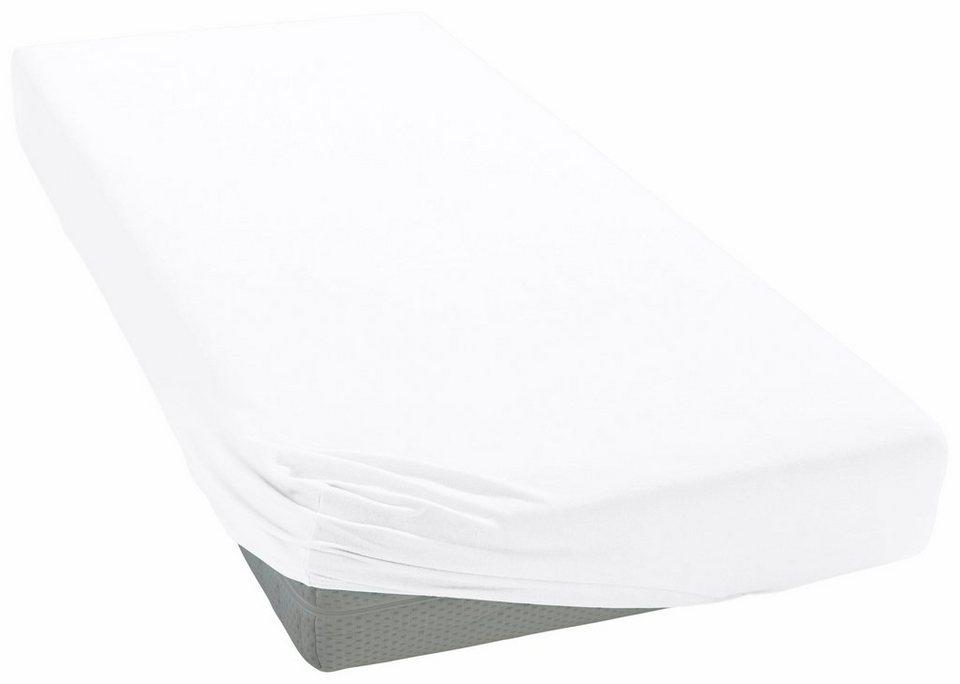 spannbettlaken mako satin curt bauer mit rundumgummizug online kaufen otto. Black Bedroom Furniture Sets. Home Design Ideas