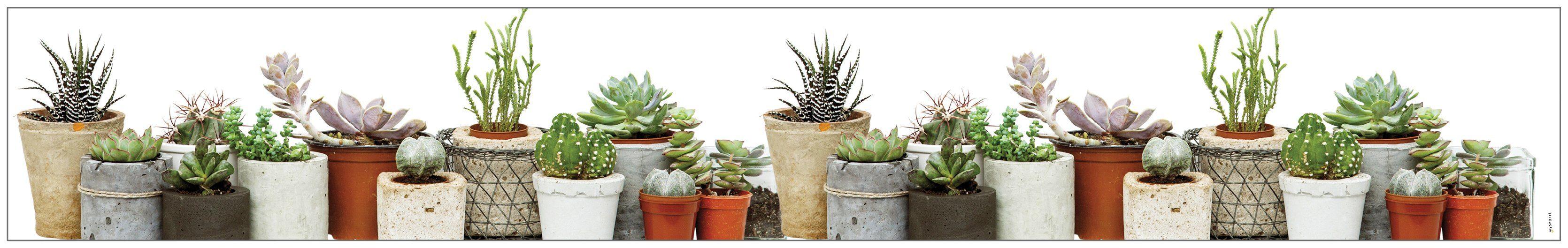 MYSPOTTI Fensterfolie »mySPOTTI look Succulents«, 200 x 30 cm, statisch haftend