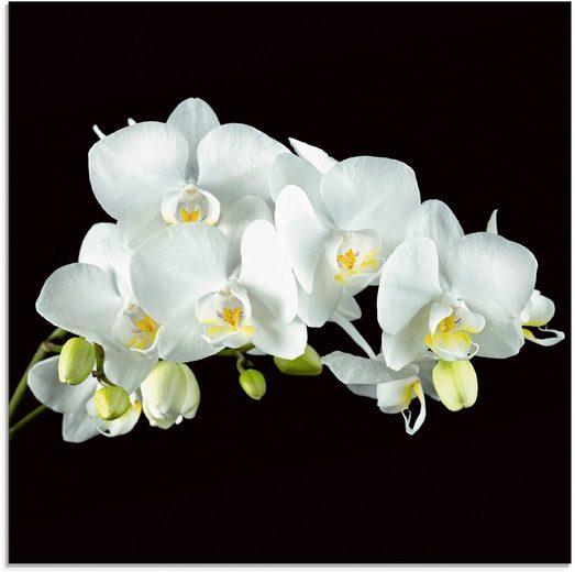 Artland Glasbild »Weiße Orchidee auf schwarzem Hintergrund«, (1 Stück)