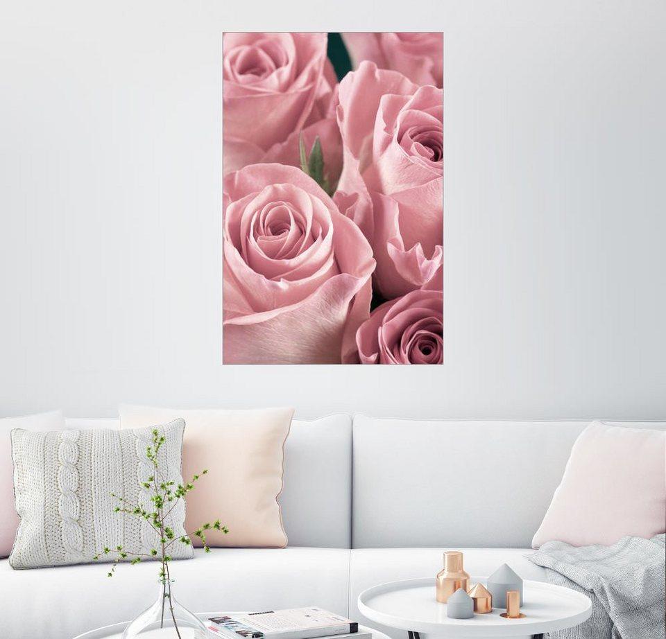 Posterlounge wandbild bund rosen in altrosa otto - Wandbild altrosa ...