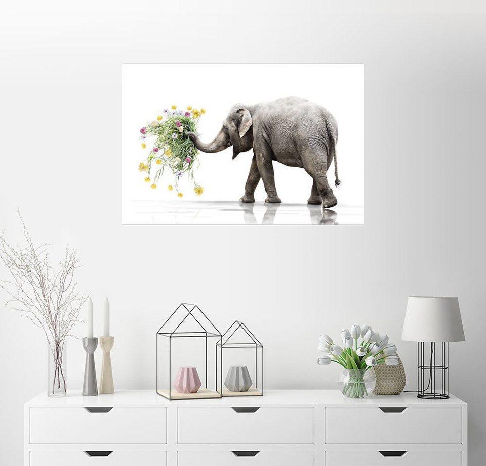 Posterlounge Wandbild - Werner Dreblow »Elefant mit Blumen« online ...