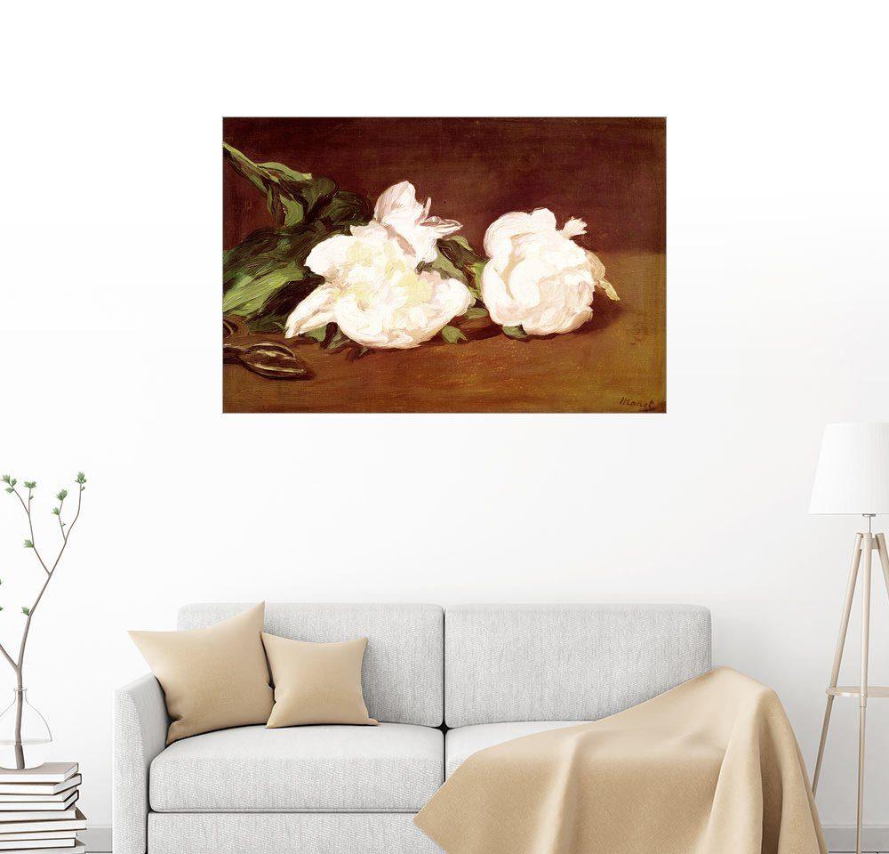 Posterlounge Wandbild - Edouard Manet »Weiße Pfingstrosen und eine Gartenschere«
