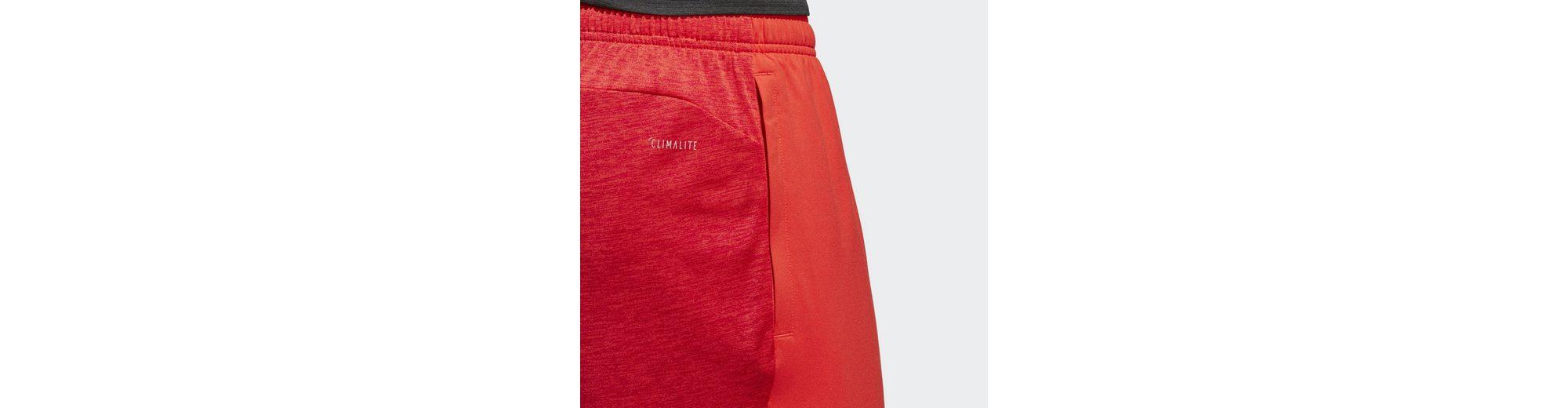 Billiges Outlet-Store adidas Performance Shorts 4KRFT Gradient Auslass Offiziellen Spielraum Browse Spielraum Niedrigsten Preis Steckdose Neuesten 92xxEIJtof