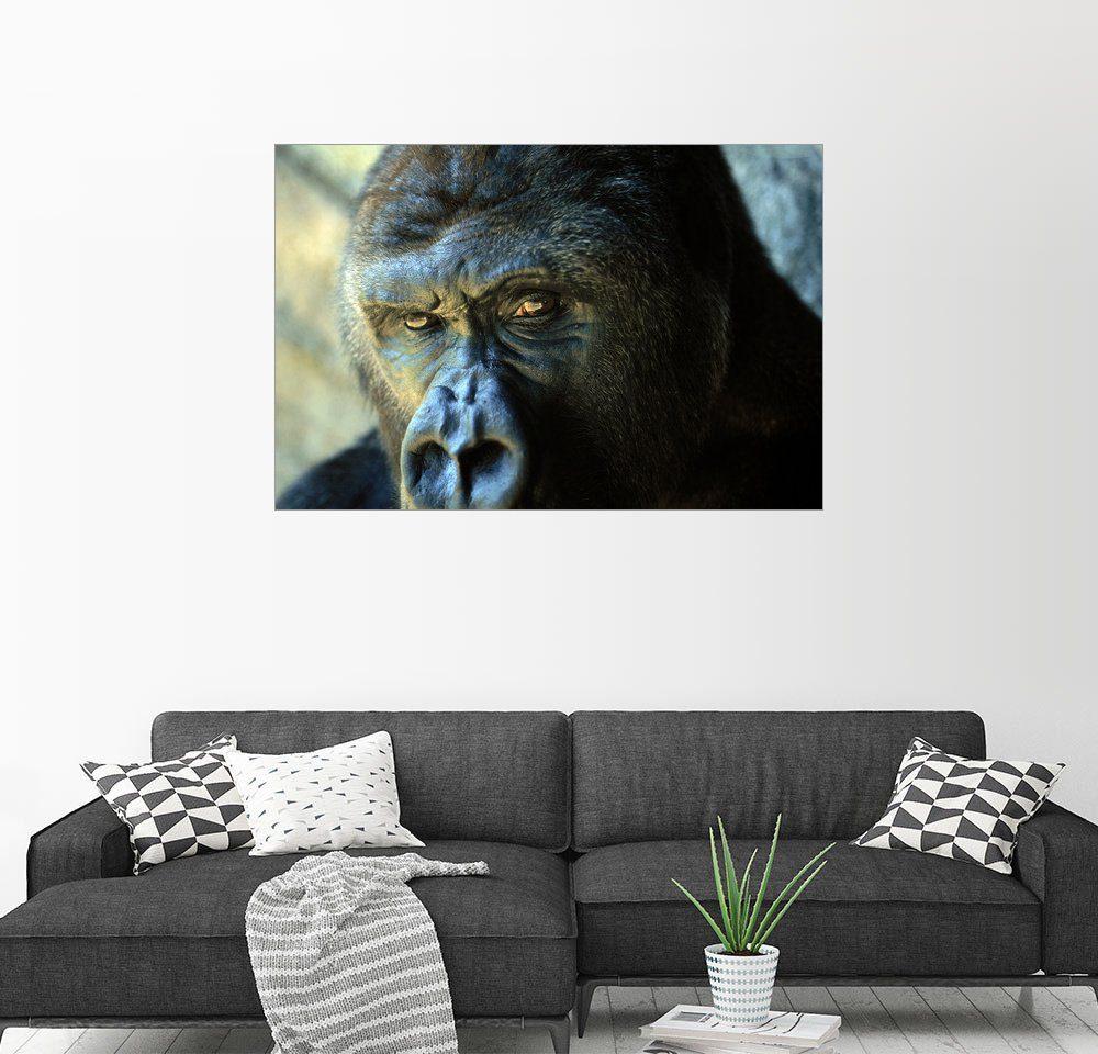 Posterlounge Wandbild - Joel Sartore »Gorilla«