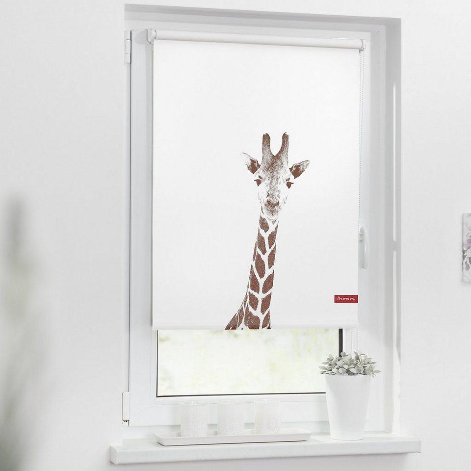 lichtblick rollo klemmfix ohne bohren verdunkelung giraffe online kaufen otto. Black Bedroom Furniture Sets. Home Design Ideas