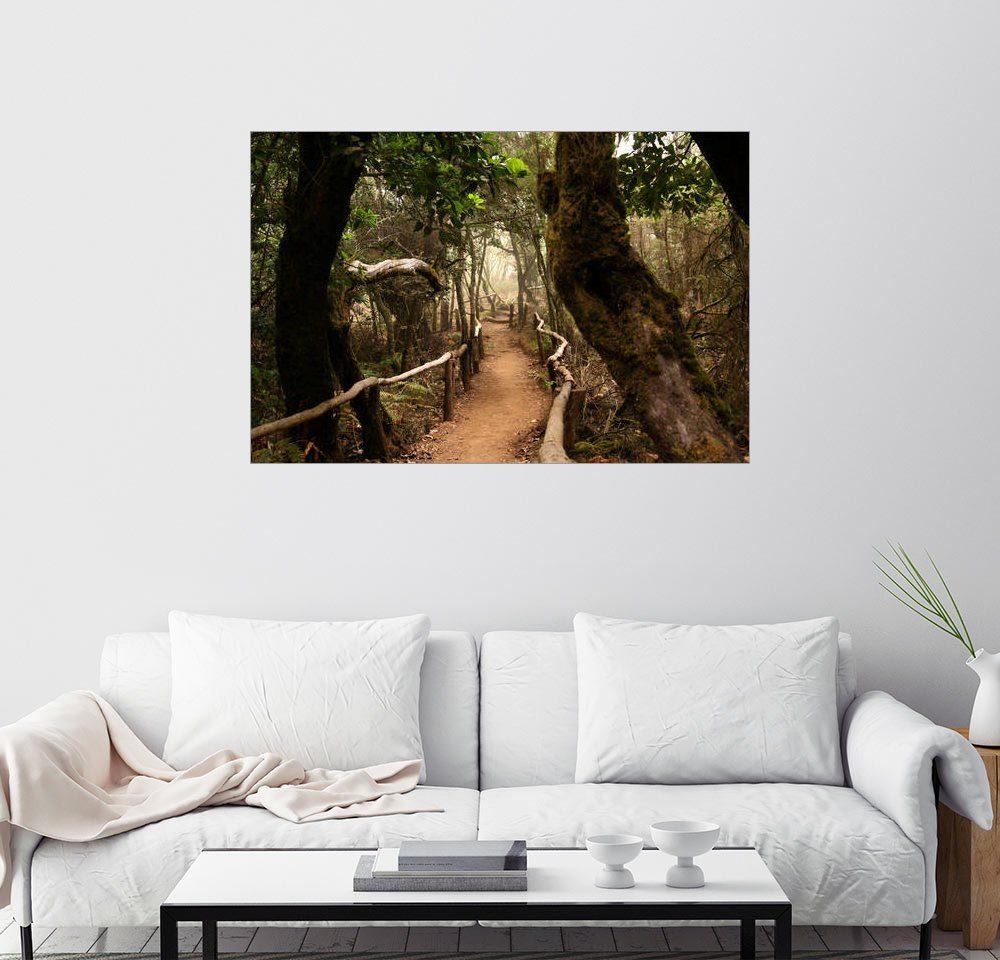 Posterlounge Wandbild - Jens Berger »Wald auf Gomera«