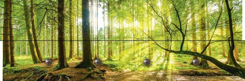Artland Wandgarderobe »Günter Albers: Wald mit Bach« | Flur & Diele > Garderoben > Garderobenhaken | Mdf - Holzfaserplatte | Artland