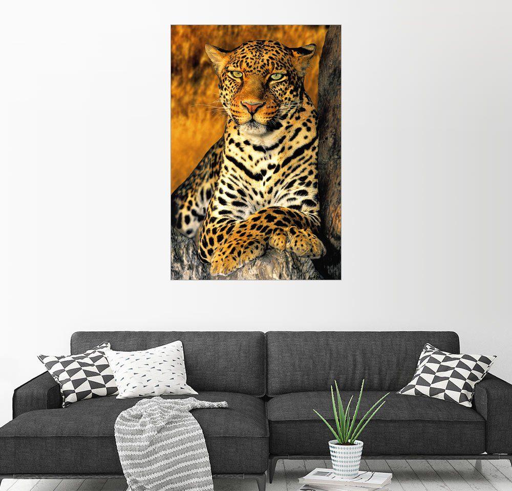 Posterlounge Wandbild - Dave Welling »Afrikanischer Leopard«