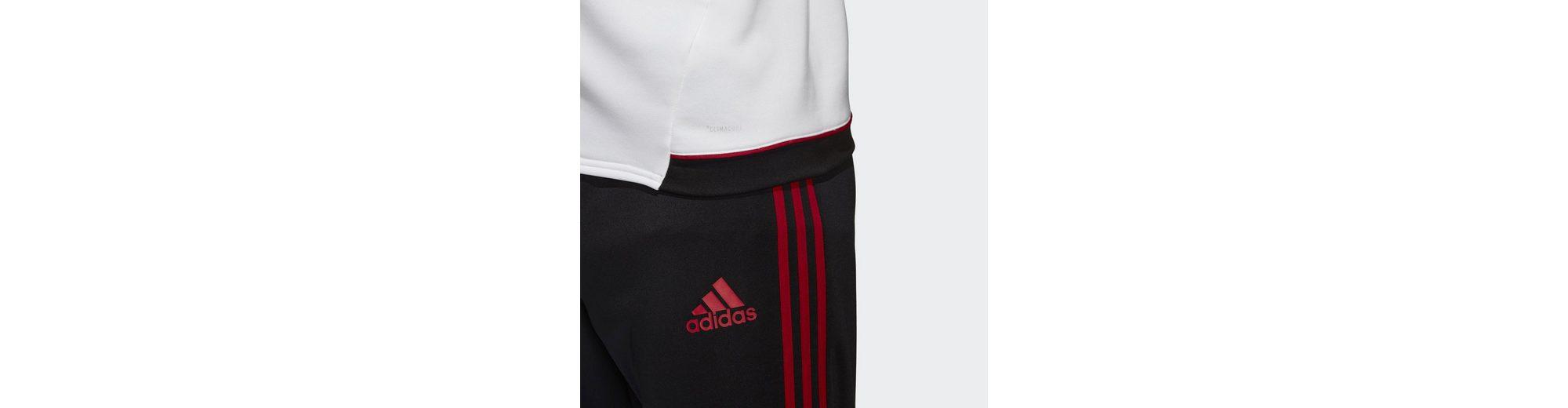 adidas Performance Sporttop AC Mailand Trainingshose Bester Platz Verkauf Günstigsten Preis Neuankömmling HiQwR