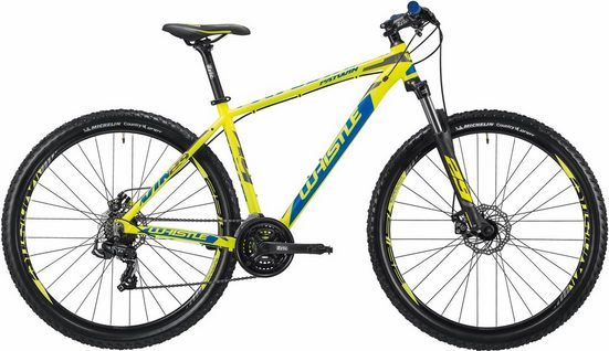"Whistle Mountainbike »PATWIN 29"" 1835«, 21 Gang Shimano RD-TX500, 7 speed Schaltwerk, Kettenschaltung"