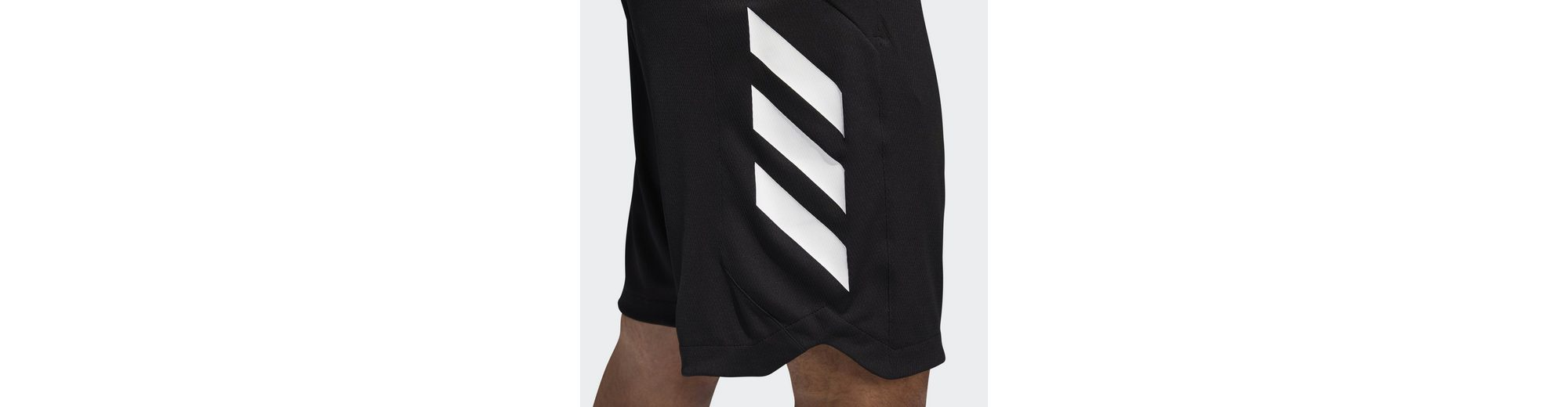 Adidas Accelerate Shorts Performance Adidas Shorts Shorts Accelerate Performance Performance Adidas x6qvqwYp