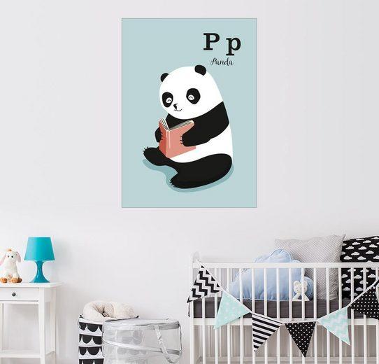 Posterlounge Wandbild - Sandy Lohß »Das Tieralphabet – P wie Panda«