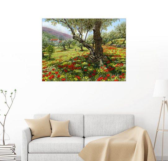 Posterlounge Wandbild - Richard Harpum »Andalusischer Olivenhain«