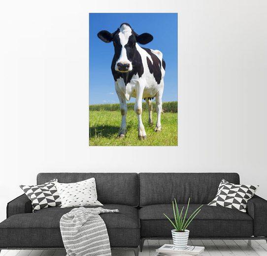 Posterlounge Wandbild »Kuh - Schwarz Weiß«