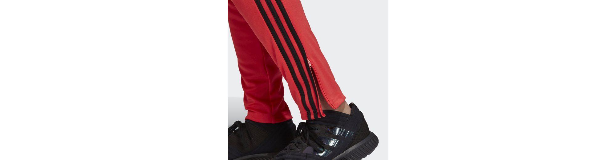 Zahlen Mit Paypal Günstig Online Spielraum Fabrikverkauf adidas Performance Trainingshose Tango lkrDWsxtj