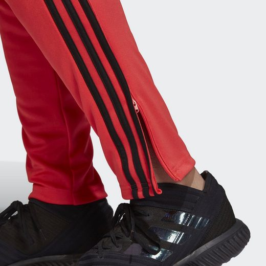 adidas Performance Trainingshose Tango