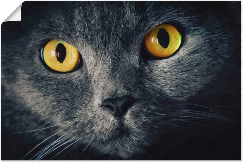 Artland Wandbild »Katzenaugen«, Haustiere (1 Stück), in vielen Größen & Produktarten - Alubild / Outdoorbild für den Außenbereich, Leinwandbild, Poster, Wandaufkleber / Wandtattoo auch für Badezimmer geeignet