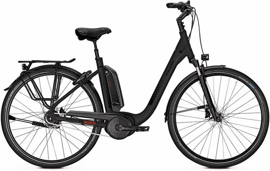 Raleigh E-Bike »Kingston XXL«, 8 Gang, 250 W