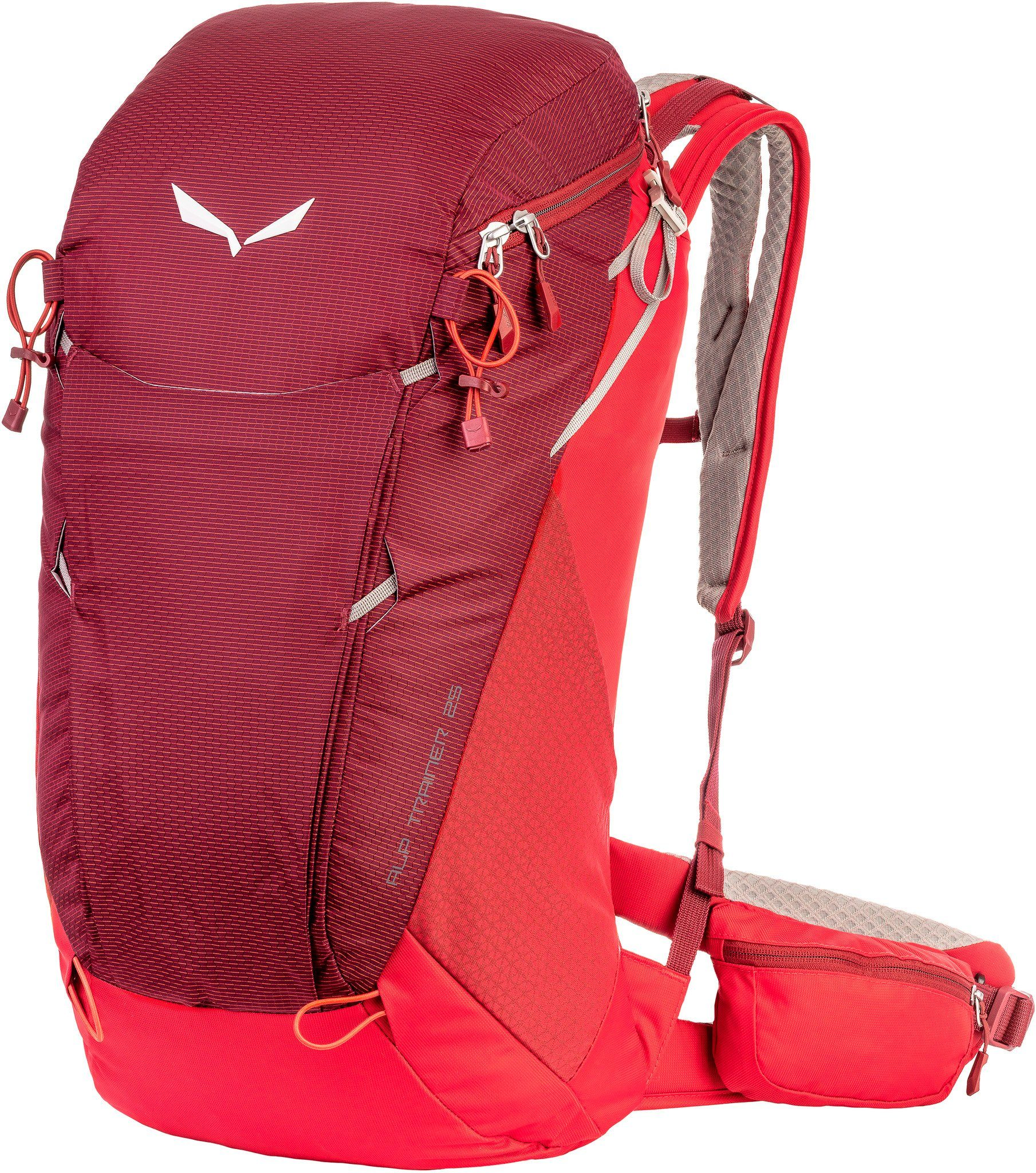 Salewa Wanderrucksack »Alp Trainer 25 Backpack«