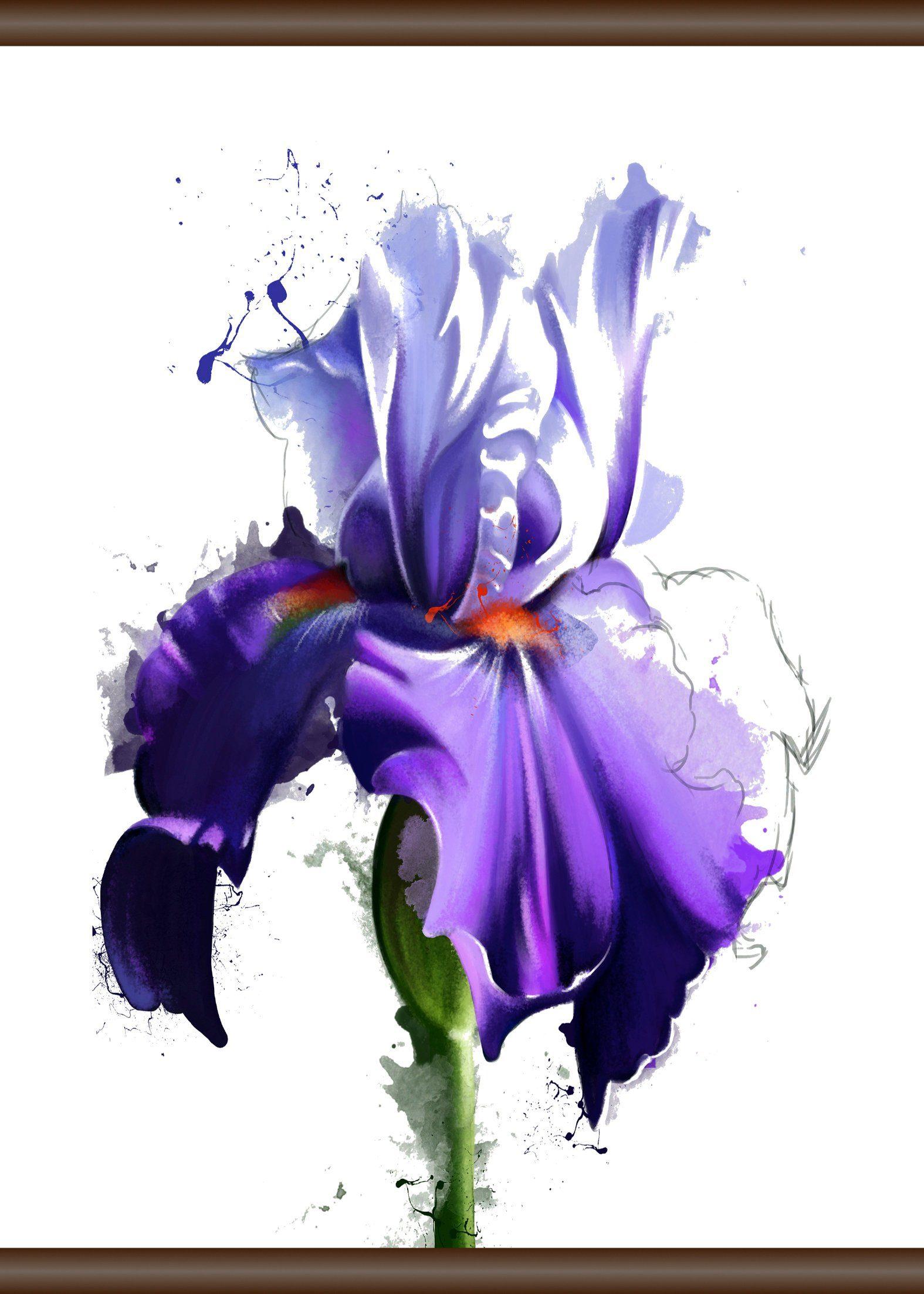 QUEENCE Leinwand »Lila Blüte«, Leinwand Rollbild 50x70 cm