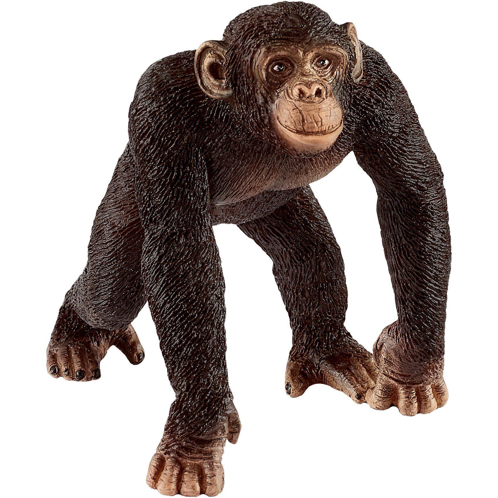 Schleich® 14817 Wild Life: Schimpanse Männchen