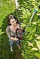 GARDENA Akku-Heckenschere »ComfortCut Li-18/50, 09837-55«, 50 cm Schnittlänge, ohne Akku, Bild 4
