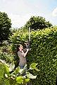 GARDENA Akku-Heckenschere »ComfortCut Li-18/50, 09837-55«, 50 cm Schnittlänge, ohne Akku, Bild 7