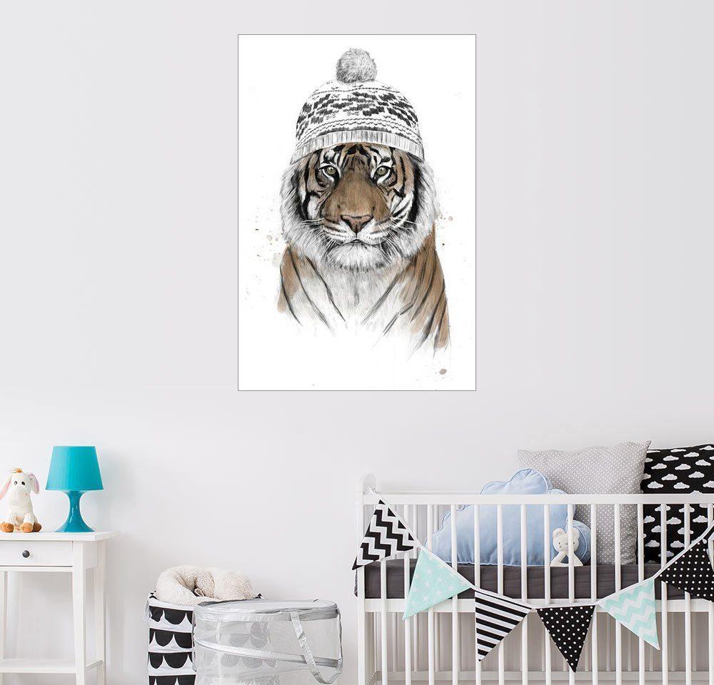 Posterlounge Wandbild - Balazs Solti »Sibirischer Tiger«