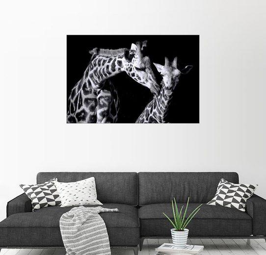 Posterlounge Wandbild - Sabine Wagner »Mutter und Kind Giraffe«