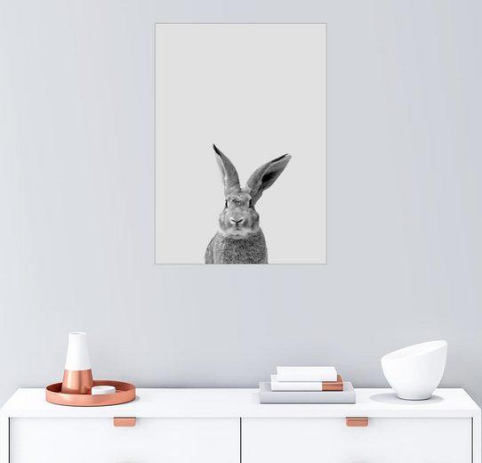 Posterlounge Wandbild - Finlay and Noa »rabbit«