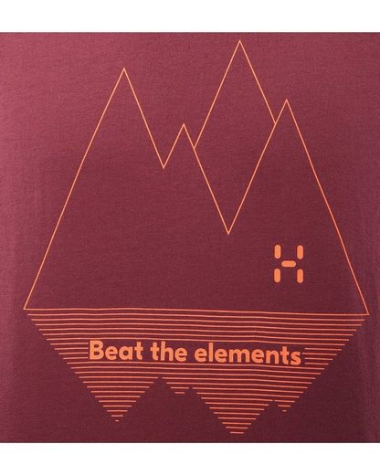 Haglöfs T-Shirt Camp Tee