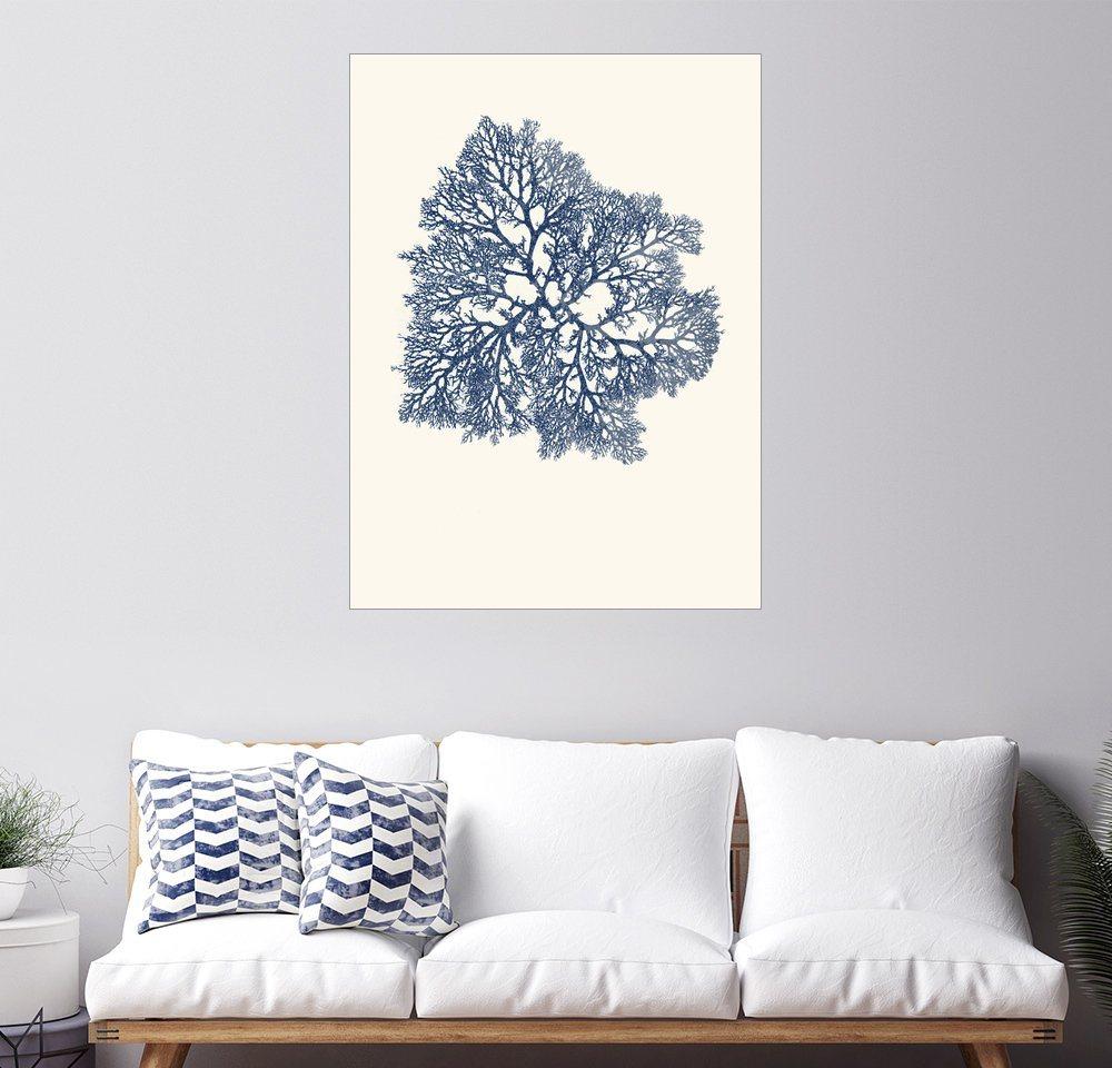 Posterlounge Wandbild - Patruschka »Blaue Koralle, verzweigt« | Dekoration > Bilder und Rahmen > Bilder | Holz | Posterlounge