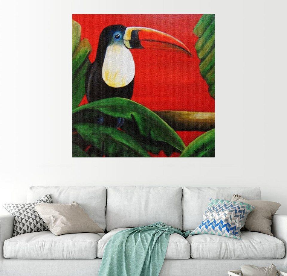 posterlounge wandbild anowi tukan exotische vogel online kaufen otto. Black Bedroom Furniture Sets. Home Design Ideas