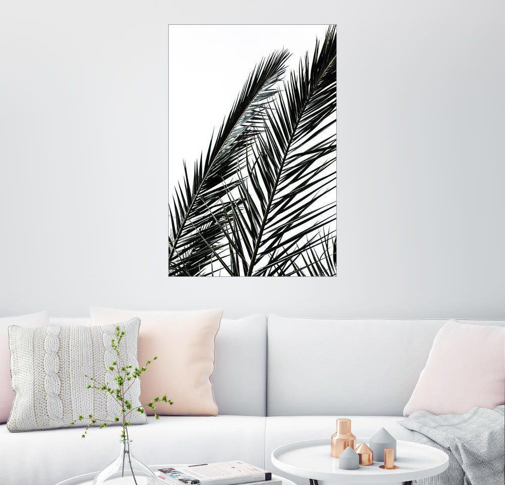 Posterlounge Wandbild - Mareike Böhmer Photography »Palm Leaves«