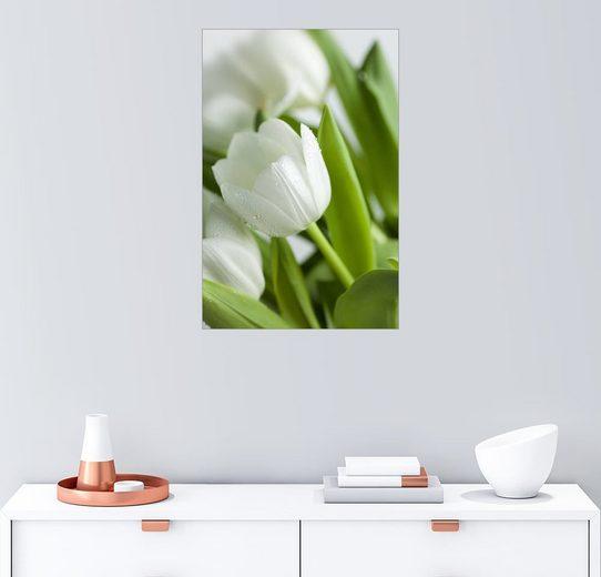 Posterlounge Wandbild - Nailia Schwarz »Weiße Tulpen 02«