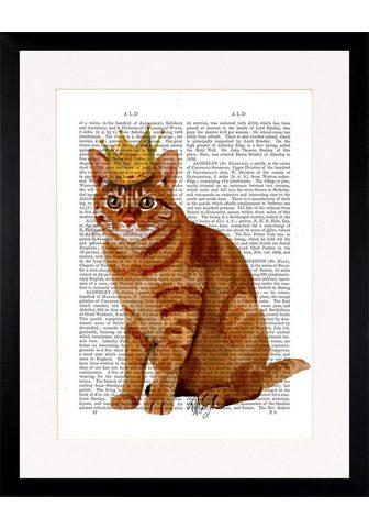 G&C G&C paveikslas »NEWSPAPER CROWN CAT«