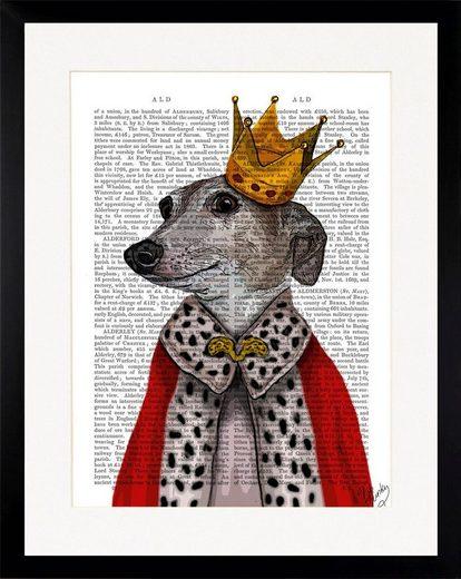 G&C Bild »NEWSPAPER ROYAL DOG«, gerahmt