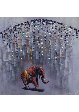 KAYOOM Aliejinis paveikslas »Elefant« Drambli...