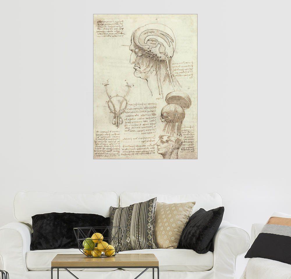 Posterlounge Wandbild - Leonardo da Vinci »Gehirn und Schädel« | Dekoration > Bilder und Rahmen > Bilder | Holz | Posterlounge