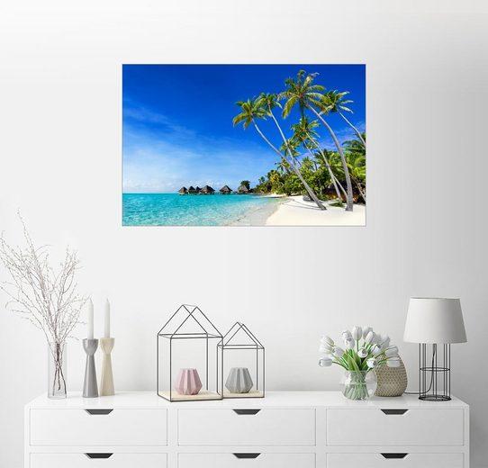 Posterlounge Wandbild - Jan Christopher Becke »Palmenstrand und Meer auf einer einsamen Inse...«