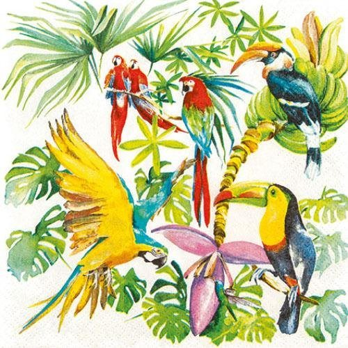 Serviette ´´Birds of Paradise´´ | Heimtextilien > Tischdecken und Co > Servietten | Papier
